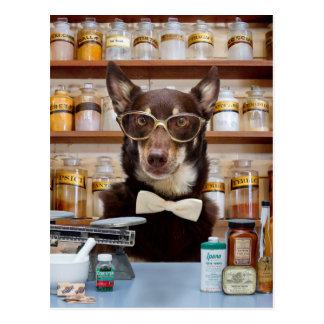 The Chemist Postcard