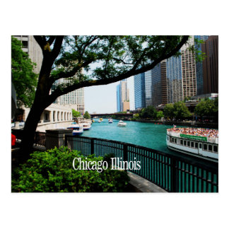 The Chicago River Front Post Cards