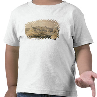 """The Citadel of Cairo, from """"Egypt and Nubia"""" T-shirts"""