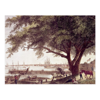The City and Port of Philadelphia, from Postcard