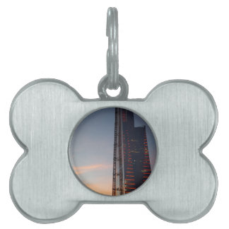 the city pet name tag