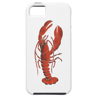 THE CLAWS FROM iPhone 5 CASE