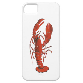 THE CLAWS FROM iPhone 5 CASES