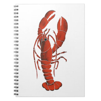 THE CLAWS FROM SPIRAL NOTEBOOK