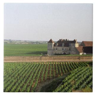 The Clos de Vougeot 16th century monastery and Tiles