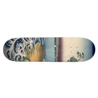 The coast at Hota in Awa province Skate Board