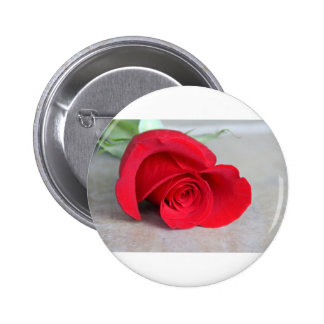 The Color of Love 2 Inch Round Button