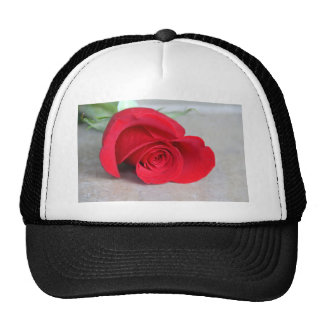 The Color of Love Trucker Hat