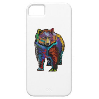 THE COLORFUL SHOW iPhone 5 CASE