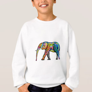 THE COLORS IMMACULATE SWEATSHIRT