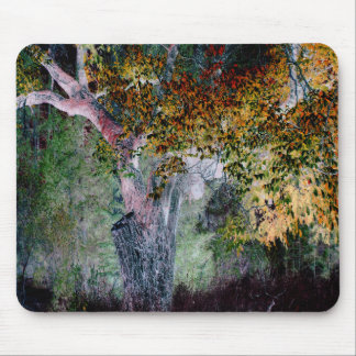 The Colors of Fall.... Mouse Pad