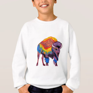 THE COLORS REVEAL SWEATSHIRT