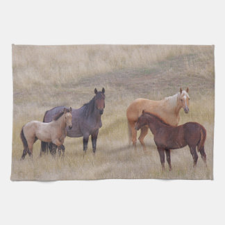 The Colours Of The Front Range Horse Kitchen Towel