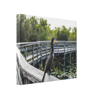 The Cormorant Stretched Canvas