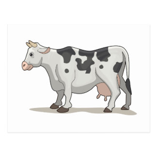 The Cow Postcard