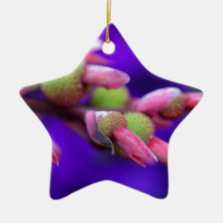 The Crayola Box Ceramic Star Ornament