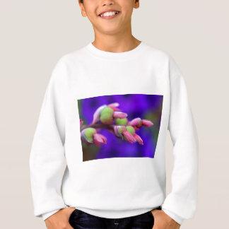 The Crayola Box Sweatshirt