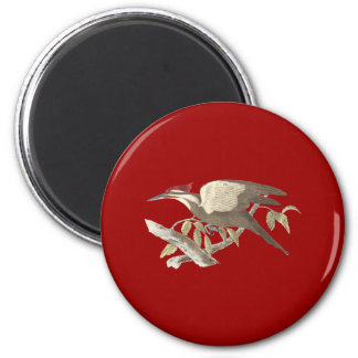 The Crested Woodpecker(Picus pileatus) 2 Inch Round Magnet