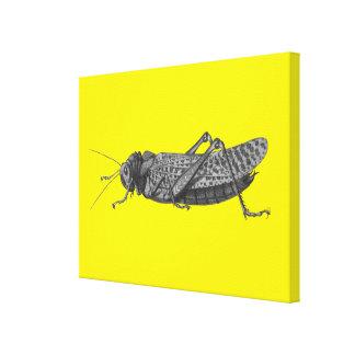 The Cricket Canvas Print