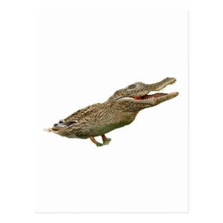 The Crocoduck Post Card