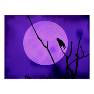 The Crow and the Amethyst Moon Poster