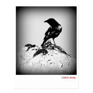 The Crow Post Card