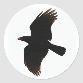 the crow round stickers