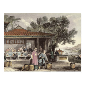 The Culture and Preparation of Tea, from 'China in Postcard