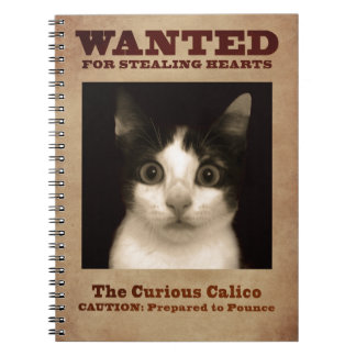 The Curious Calico Kitten Notebook