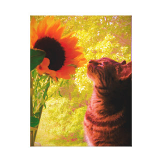 The Curious One Canvas Print