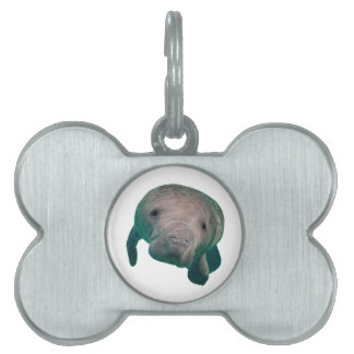 THE CURIOUS ONE PET TAG