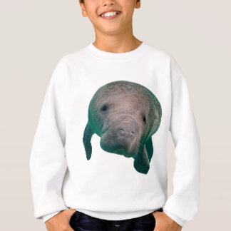 THE CURIOUS ONE SWEATSHIRT
