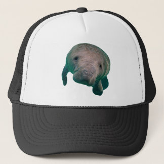 THE CURIOUS ONE TRUCKER HAT