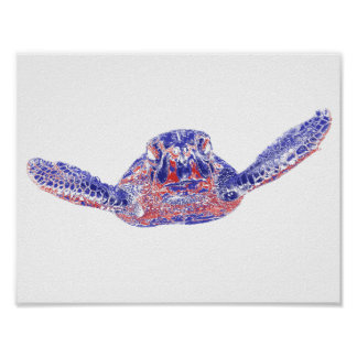 The Curious Sea Turtle Poster
