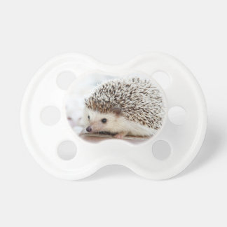 The Cute Baby Hedgehog Baby Pacifier