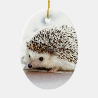 The Cute Baby Hedgehog Ceramic Ornament