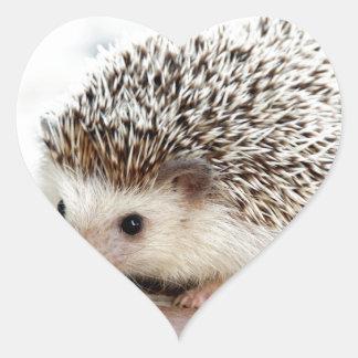 The Cute Baby Hedgehog Heart Sticker