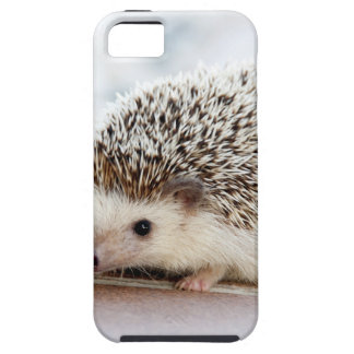The Cute Baby Hedgehog iPhone 5 Covers