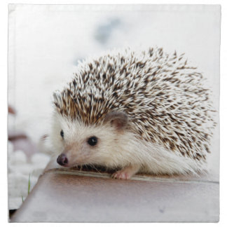 The Cute Baby Hedgehog Napkin