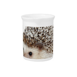 The Cute Baby Hedgehog Pitcher