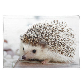 The Cute Baby Hedgehog Placemat