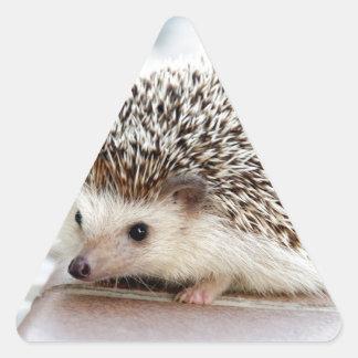 The Cute Baby Hedgehog Triangle Sticker