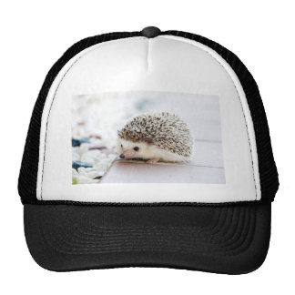 The Cute Baby Hedgehog Trucker Hat