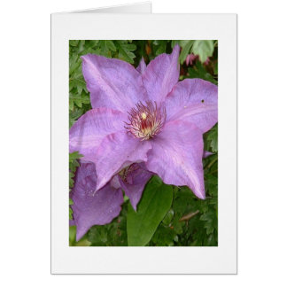 The Cute Clematis notecard Greeting Card