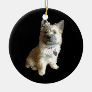 The Cutest Cairn Terrier Ever!  Cuter than Toto! Ceramic Ornament