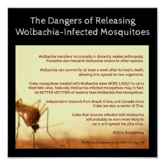 The Dangers of Wolbachia by RoseWrites Poster