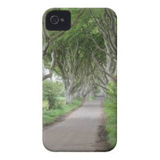 The Dark Hedges iPhone 4 Covers