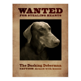 The Dashing Doberman Postcard