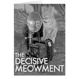 THE DECISIVE MEOWMENT NOTE CARD