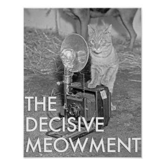 THE DECISIVE MEOWMENT POSTER